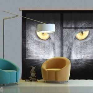 Ag Design Fotoverho Black Cat 280x245 Cm