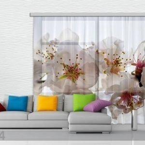 Ag Design Fotoverho Flowers 280x245 Cm