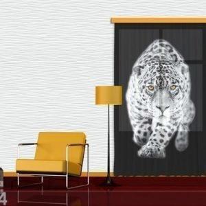 Ag Design Fotoverho Leopard 140x245 Cm