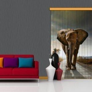 Ag Design Pimentävä Fotoverho Elephant I