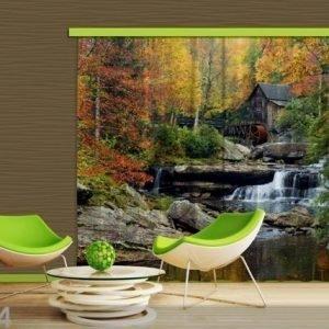 Ag Design Pimentävä Fotoverho Watermill In Autumn 280x245 Cm