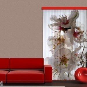 Ag Design Puolipimentävä Fotoverho Flowers 140x245 Cm
