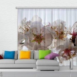Ag Design Puolipimentävä Fotoverho Flowers 280x245 Cm