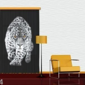 Ag Design Puolipimentävä Fotoverho Leopard 140x245 Cm
