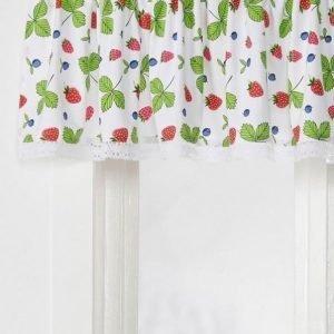 Berries Kappakangas / M Monivärinen