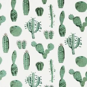Cactus Kangas / M Valkoinen