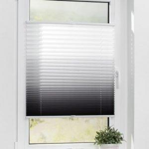 Lichtblick Sonnenschutzsysteme Pliseeverho Harmaa / Valkoinen