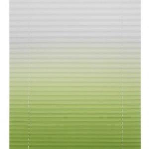 Lichtblick Sonnenschutzsysteme Pliseeverho Vihreä / Valkoinen