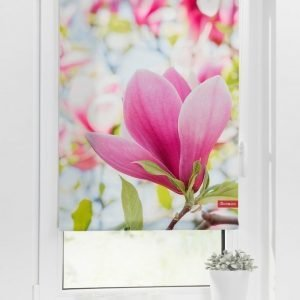 Lichtblick Sonnenschutzsysteme Rullaverho Magnolia Roosa