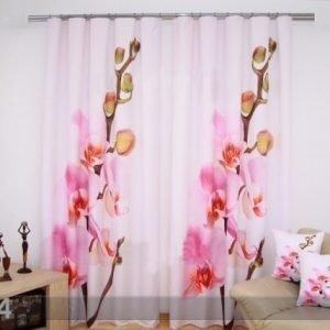 Tx 3d Verhot Roosat Orkideat 320x250 Cm