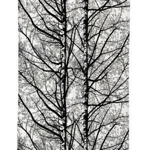 Vallila Pihapuut Verho Grey 140x250 Cm