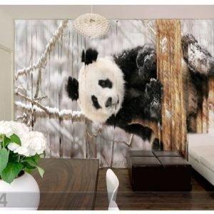 Wellmira Kuvaverhot Panda 290x250 Cm