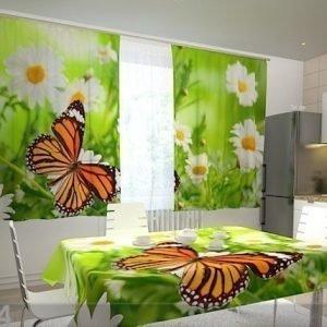 Wellmira Läpinäkyvä Verho Butterfly And Camomiles 200x120 Cm