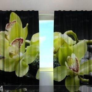 Wellmira Läpinäkyvä Verho Citreous Orchids 240x220 Cm