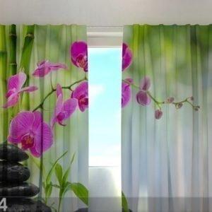 Wellmira Läpinäkyvä Verho Crimson Orchids 1