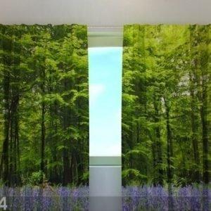 Wellmira Läpinäkyvä Verho Forest 240x220 Cm