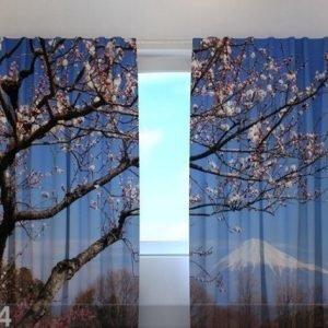 Wellmira Läpinäkyvä Verho Fuji 240x220 Cm