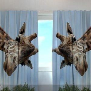Wellmira Läpinäkyvä Verho Giraff 240x220 Cm