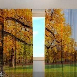 Wellmira Läpinäkyvä Verho Golden Autumn 240x220 Cm