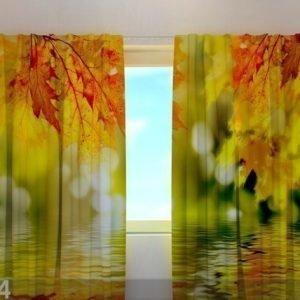Wellmira Läpinäkyvä Verho Golden Leaves 220x240 Cm