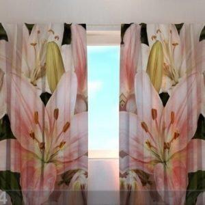 Wellmira Läpinäkyvä Verho Gorgeous Lilies 240x220 Cm