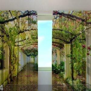 Wellmira Läpinäkyvä Verho Green Archway 240x220 Cm