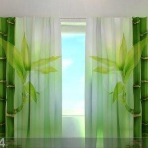 Wellmira Läpinäkyvä Verho Green Bamboo 240x220 Cm