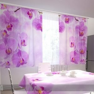 Wellmira Läpinäkyvä Verho Kitchen In Orchids 200x120 Cm