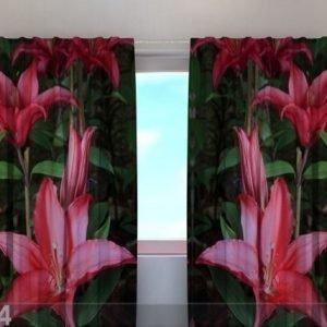 Wellmira Läpinäkyvä Verho Lilies In The Garden 240x220 Cm