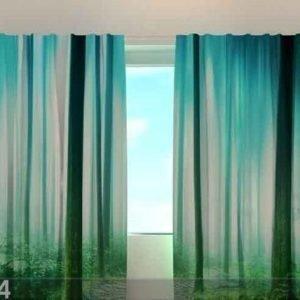 Wellmira Läpinäkyvä Verho Magic Wood 240x220 Cm