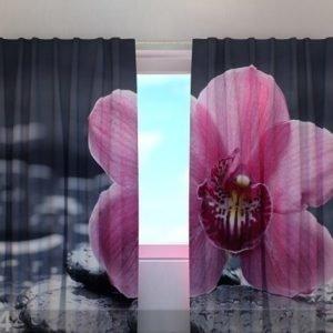 Wellmira Läpinäkyvä Verho Orchid Tenderness 240x220 Cm