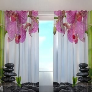 Wellmira Läpinäkyvä Verho Orchids And Bamboo 240x220 Cm