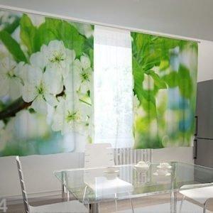 Wellmira Läpinäkyvä Verho Spring Flowers For The Kitchen 200x120 Cm