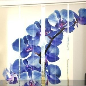 Wellmira Pimentävä Paneeliverho Blue Orchids 240x240 Cm