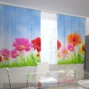 Wellmira Pimentävä Verho Bright Gerberas In The Kitchen 200x210 Cm