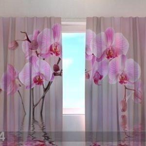 Wellmira Pimentävä Verho Lily Orchid 240x220 Cm