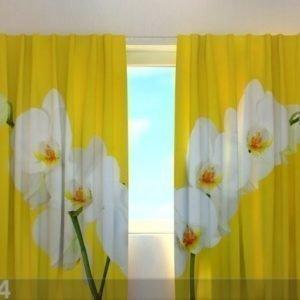 Wellmira Pimentävä Verho White Orchids 220x240 Cm