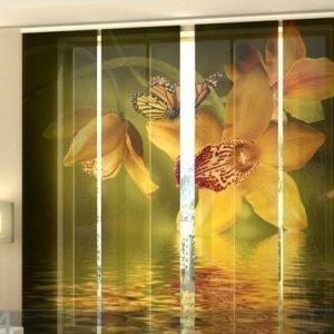 Wellmira Puolipimentävä Paneeliverho Nephrite Orchids 240x240 Cm