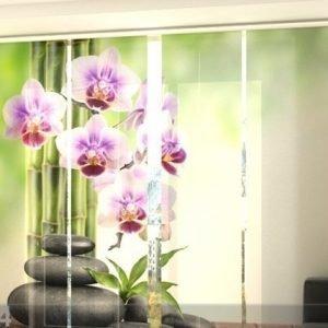 Wellmira Puolipimentävä Paneeliverho Orchids And Stones 240x240 Cm