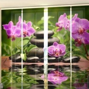 Wellmira Puolipimentävä Paneeliverho Orchids In The Garden 240x240 Cm