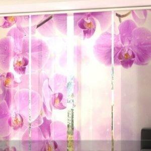 Wellmira Puolipimentävä Paneeliverho Starry Orchid 240x240 Cm