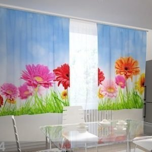 Wellmira Puolipimentävä Verho Bright Gerberas In The Kitchen 200x210 Cm