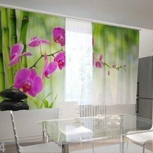 Wellmira Puolipimentävä Verho Crimson Orchids In The Kitchen 200x120 Cm