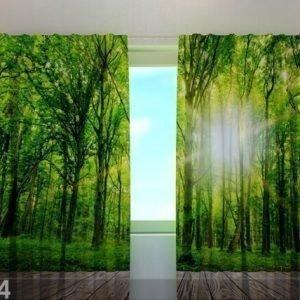 Wellmira Puolipimentävä Verho Forest At The Doorstep 240x220 Cm