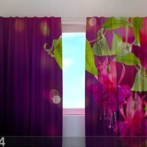Wellmira Puolipimentävä Verho Fuchsia Flowers 240x220 Cm