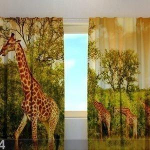 Wellmira Puolipimentävä Verho Giraffes 240x220 Cm
