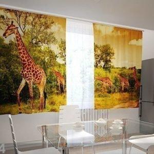 Wellmira Puolipimentävä Verho Giraffes In The Kitchen 200x120 Cm