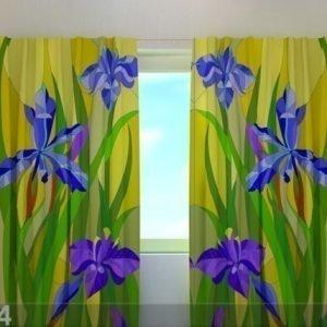 Wellmira Puolipimentävä Verho Irises 240x220 Cm