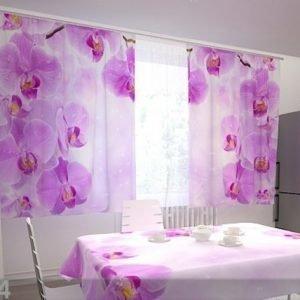 Wellmira Puolipimentävä Verho Kitchen In Orchids 200x120 Cm