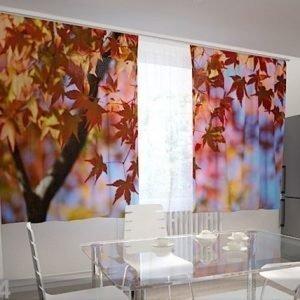 Wellmira Puolipimentävä Verho Maple Leaves In The Kitchen 200x120 Cm